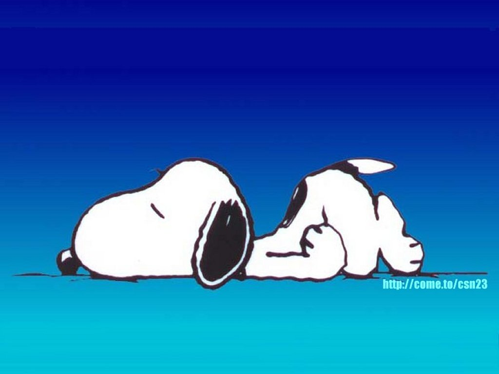 http://bloggersofhealth.com/wp-content/uploads/2011/12/sleeping-snoopy.jpg